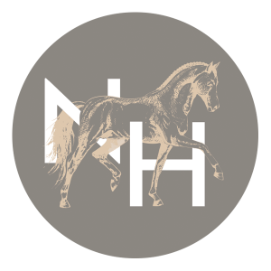 Nina Hainz | Coaching Training Consulting | Logo Footer